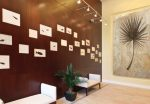 fossil mosaic tile wall commercial 6 with palm