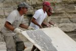 lifting fossil fish slab at quarry 7